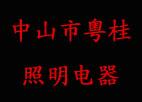 粤桂照明电器超级市场向全国隆重招商